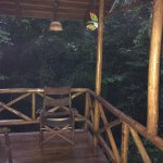 Foto de Tree Houses Hotel Costa Rica