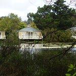 Bilde fra Woodman Estate