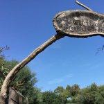 Parco Naturalistico Bellavista