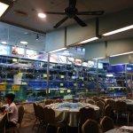 Water tanks full of seafood