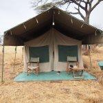 Photo of Serengeti Halisi Camp