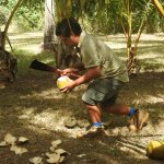 Napari demonstrates how to cut into a fresh coconut