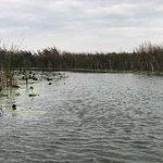 Photo of Danube Delta