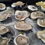 Delicious plump oysters