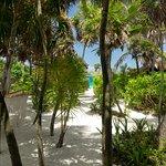 pasillo que da a la playa desde nuestro cuarto