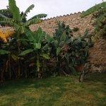 Foto de Sa Bassa Rotja Ecoturisme