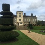 extraordinary topiary in garden
