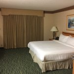 Embassy Suites by Hilton Raleigh - Durham/Research Triangle Photo