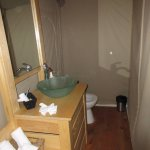 Flush toilet and hot/cold running water