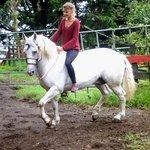 Photo of Horse Trek Monteverde