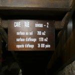 Cave level information