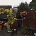 The Back Yard/ Beer Garden
