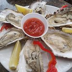 Kachemak Bay Oysters in the half shell
