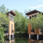 A couple of the spa pavilions over the mangrove.