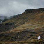 Photo de Pink Iceland Day Tours