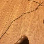 more bugs on floor