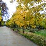 Photo de Parc de la Pépinière