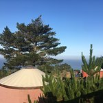 View from our Yurt