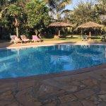 Bild från Arusha Planet Lodge