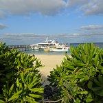 Foto de Heron Island Resort
