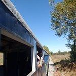 Potomac Eagle Scenic Railroad Foto