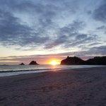 Hahei Holiday Resort Foto