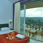 Forest View super deluxe room