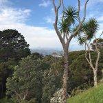 Photo of Wellington Botanic Garden