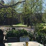 Blick in den herrlichen Stadtgarten/Unipark - 5 Minuten zu Fuß in die Stadtmitte.