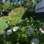 Early Fall gardens at Spruce Point Inn