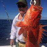 Scorpion fish in Coastal fishing