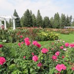 Don't miss the rose garden in the same park