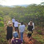 Recorriendo el cafetal y aprendiendo sobre el cultivo del café