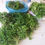 local wild spinach from all over the skiathos
