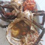 Local Wild Crab