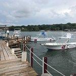 Foto de Seagrape Plantation Resort