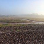 An early morning stroll. Mist on the estuary. Mystical.