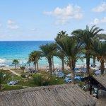 Photo of Venus Beach Hotel