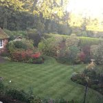 View of the garden from my bedroom