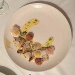 John Dory, Quail Eggs, Cauliflower, Mussels