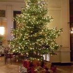 Hotel lobby Christmas Tree December 2016