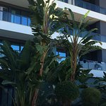 Photo of Alvor Baia Resort Hotel