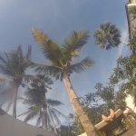 Bild från My Blue Hotel