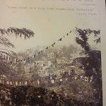Green Hotel McLeod Ganj Dharmsala India July 2017