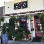 Lavier Latin Fusion Restaurant in San Rafael