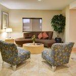 Bilde fra Comfort Suites Lindale - North Tyler