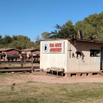 Trail Horse Adventures Photo