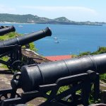 The Guns of Fort George