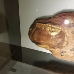 Foto de Museo Egipcio de Barcelona