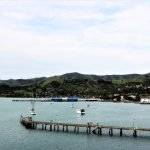 view from the walk into akaroa town